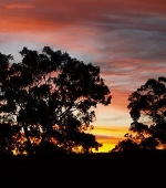 Woolshed Cabins Sunsets