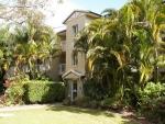 Paradise Grove Apartments