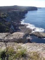 Coastal Walks around Jervis Bay Marine Park