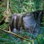 Lake Eacham Falls