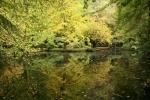 Nearby Alfred Nicholas Gardens Lake