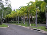 tropical gardens set on nearly 3 acres