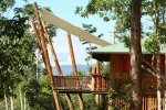 Treehouse in the rainforest