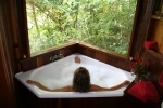 Relax in your spa bath treehouse
