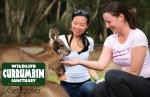 Currumbin Wildlife Sanctuary 10 minutes away
