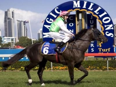 BMW Magic Millions Carnival Accommodation