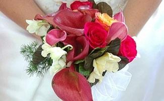 Noosa Wedding Expo Accommodation